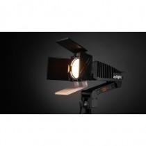 Newz LED Light