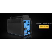 2500W/4000W Electronic Ballast